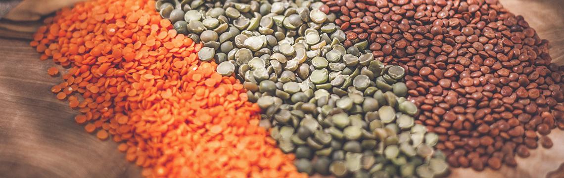 Alimentation santé-Santé naturelle-Naturopathie
